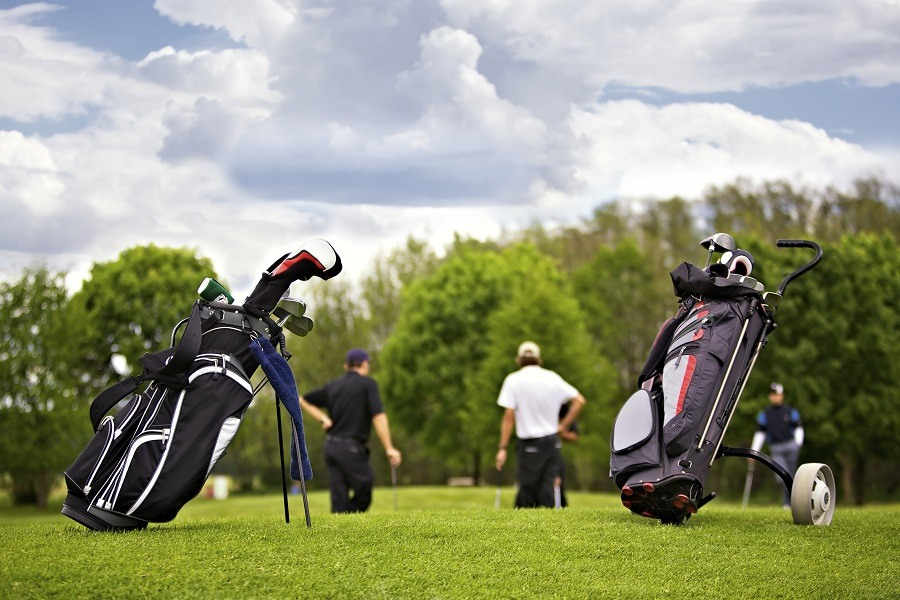 Two Golf Bags Standing on Golf Court