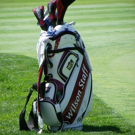 Golf Clubs in Wilson Golf Bag
